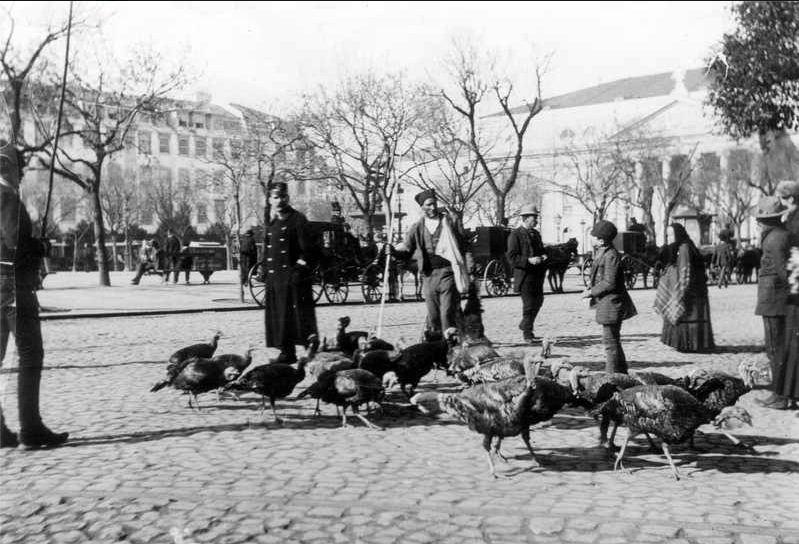 продажа индеек на Росиу. 1891 год.
